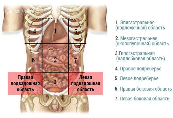 Остеохондроз грудного отдела позвоночника и панкреатит