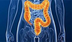 Ирригоскопия кишечника: что это за исследование и как его делают