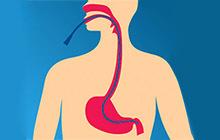 зондирование двенадцатиперстной кишки и желчных протоков