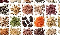 Какие овощи не вызывают газообразование в кишечнике