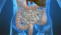 Болит живот и диарея: причины и лечение