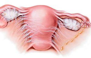 Причины и лечение боли внизу живота после мочеиспускания у женщин